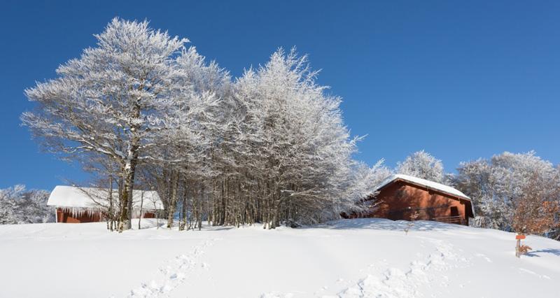 Chalets Iraty en hiver