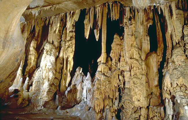 Grottes Isturitz Oxocelhaya-concrétions