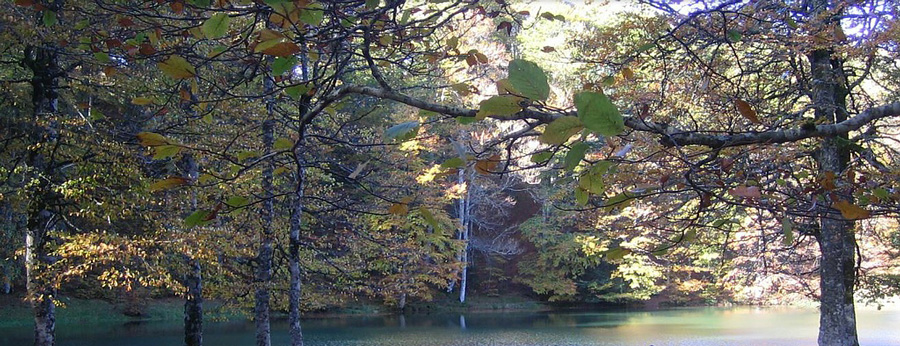 Chalets iraty-lac en automne
