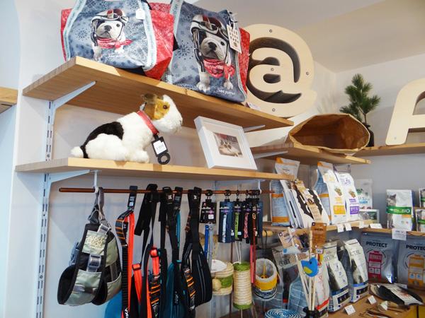 babine store concept-Bayonne-accessoires chien