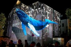 street-art festival-Bayonne-octobre2019