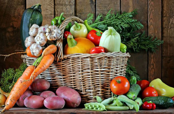 fruit-legume-pays-basque