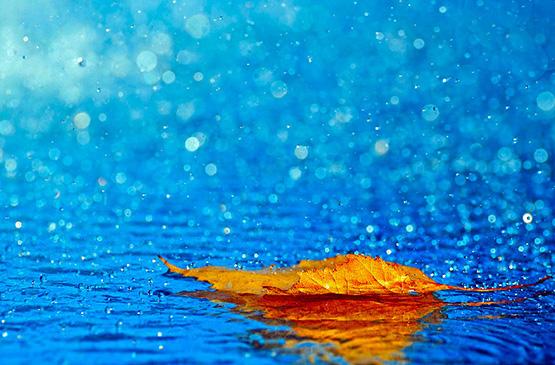 Que faire au Pays basque quand il pleut ?