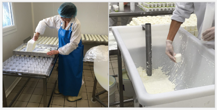 baskalia preparation