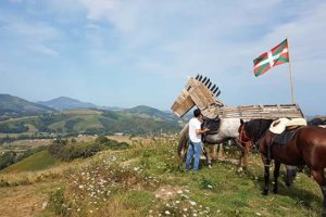 chapitalia-balade-cheval-pays-basque