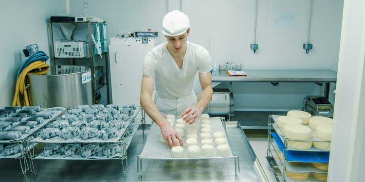 fromage-artisan-fromager-laboratoire