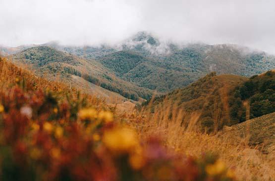 pays-basque-colline-automne