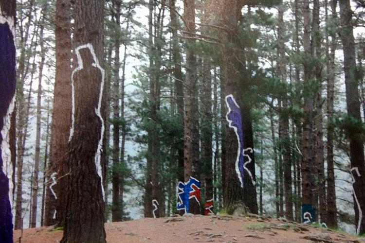 Peintures-arbres-foret-d-oma