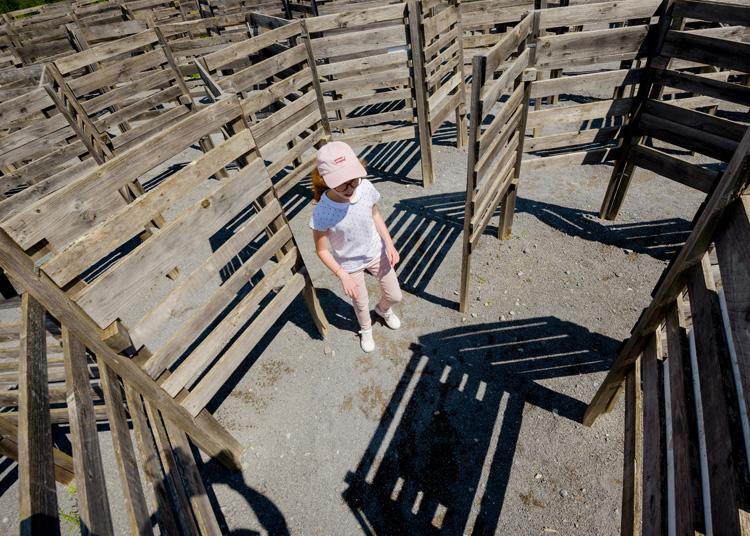 ludopia-enfant-labyrinthe-bois