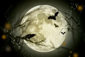 Image couverture articles idées sorties week-end 30 octobre Pays Basque Halloween